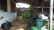 Piden implementar área para casos de dengue en Hospital Santa Rosa