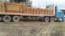 La Oroya: decomisan más de 4 mil tablares de madera ilegal