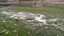 Hallan cadáver de varón en estanque de Socabaya