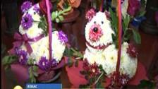 Aumentan precios de arreglos florales al acercarse San Valentín
