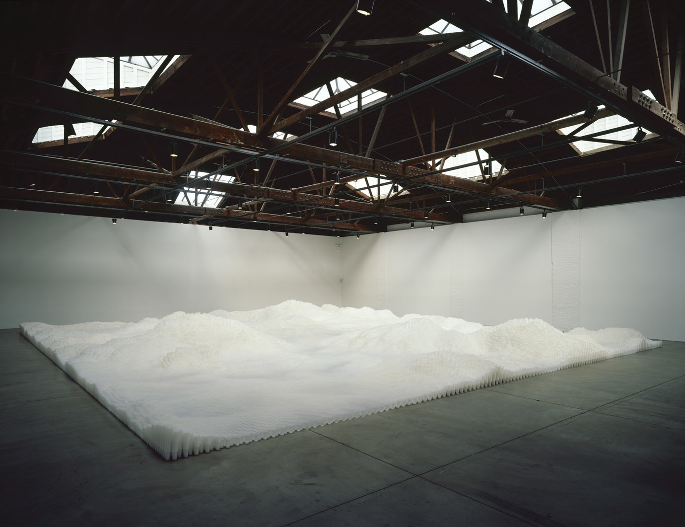 , 2006. plastic cups, dimensions variable.
