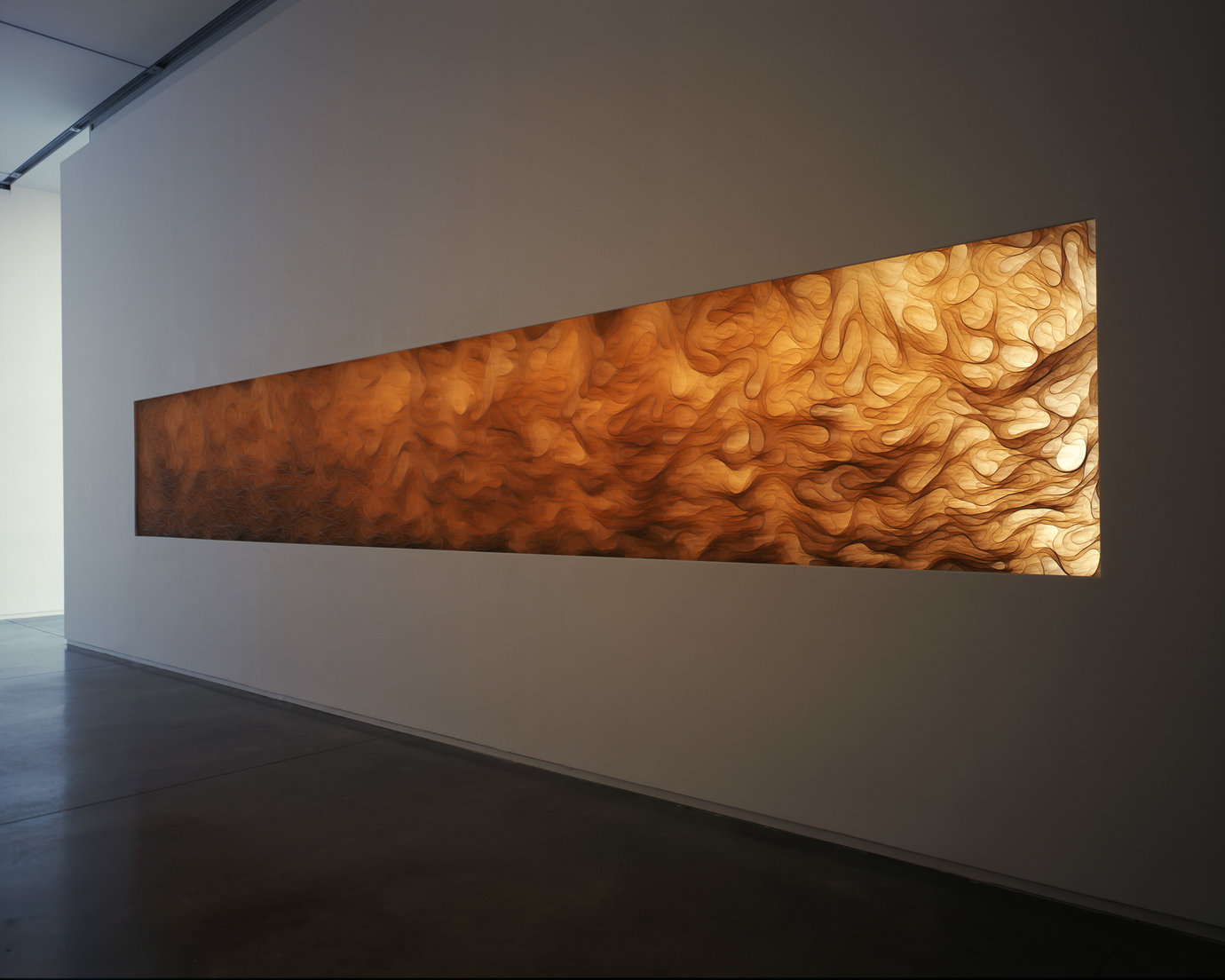 , 2008. polyester film, installation dimensions variable.