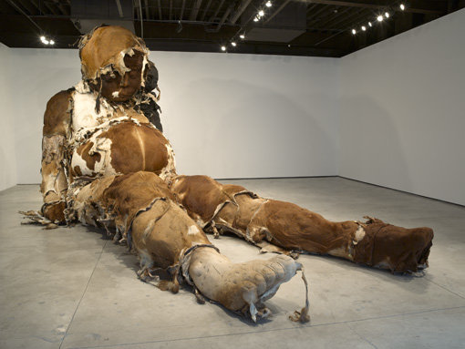 , 2008. Cowskin, steel, wood and polystyrene foam , 181 x 394 x 165 inches(460 x 1000 x 420 cm)     .