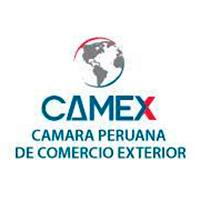camex-logo
