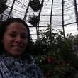 Adriana Silva Instant Professional English To Spanish Translation