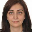 Layla Arab Instant Professional English To Arabic Translation