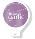 italian&lt;br /&gt; garlic dip