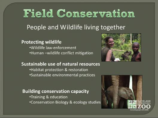 Learning Module - Conservation