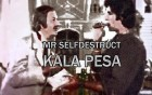 Mr Selfdestruct – Kala Pesa artwork