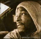 """Ill Poetic – Marvin Gaye & Pink Floyd """"Requiem For A Dream"""" artwork"""