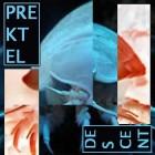 Prektel – descent artwork