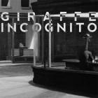 Giraffe Incognito – The Pursuit Continues artwork