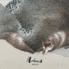 Holmes – Wolves artwork