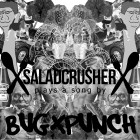 XsaladcrusherX – XsaladcrusherX Plays A Song By bugXpunch artwork
