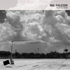 Nic Falcon – Playing Fair artwork