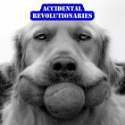 Accidental Revolutionaries – Accidental Revolutionaries artwork