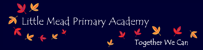 Little Mead Primary Academy