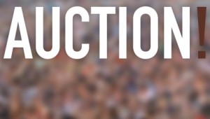 Event: Auction Kick-Off Event