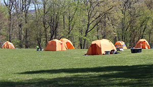 Event: Park Camps: Bruins Campout