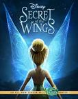 Secret of the Wings's poster (Bradley Raymond)