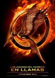 The Hunger Games: Catching Fire 's poster (Francis Lawrence)