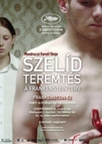 Szeld teremts - A Frankenstein-terv's poster (Kornl Mundrucz)