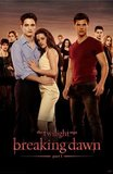 The Twilight Saga: Breaking Dawn Part 1's poster (Bill Condon)