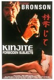 Kinjite: Forbidden Subjects's poster (J. Lee Thompson)