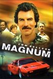 Magnum, P.I.'s poster (Donald P. Bellisario (Creator)Glen A. Larson (Creator))