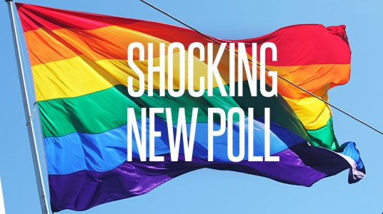Shocking poll: More Americans oppose same-sex 'marriage'