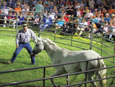 'Horse whisperer' proclaims gospel during state fair