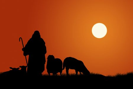 Called to shepherd the flock of Christ