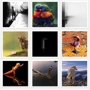 Apps_iphone_iso500_for_500px_layout_grid_tiles