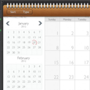Apps_ipad_moneywiz_skeuo_calendar