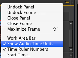 Show Audio TIme Units