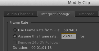 Interpret Footage Adobe Premiere Pro