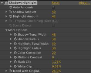 Shadow Highlight Controls