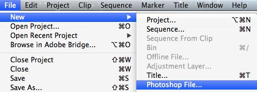 Adobe Photoshop File in Premiere Pro