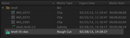 Adobe Prelude Rough Cut
