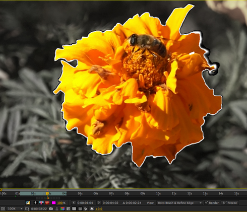 Refine Edge in After Effects