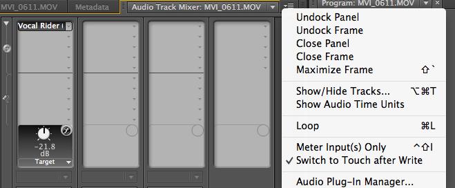 Audio Plug-in Mnager Track Audio Mixer