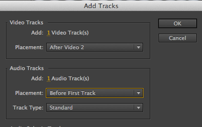 Add Tracks Options