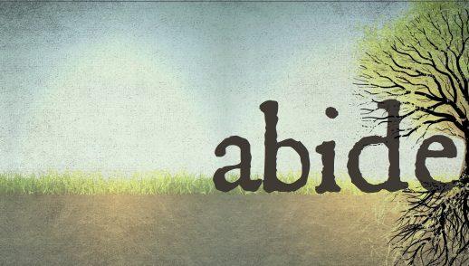 Abide Here