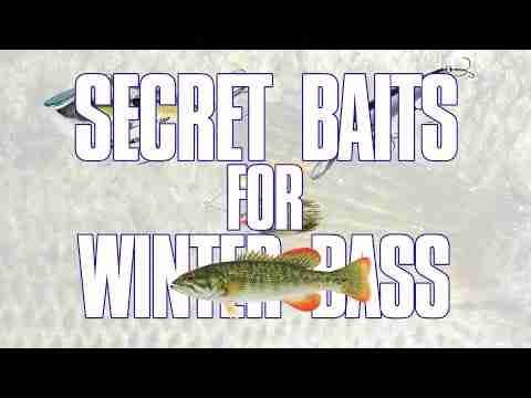 Secret Baits for Winter Bass