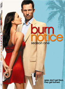 Burn notice temporada 1 dvd peliculasdelrio