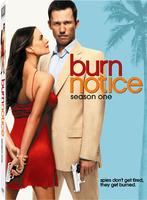 Burn notice temporada 1 dvd peliculasdelrio