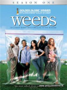 Weeds 1 dvd peliculasdelrio