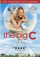 The big c temporada 1
