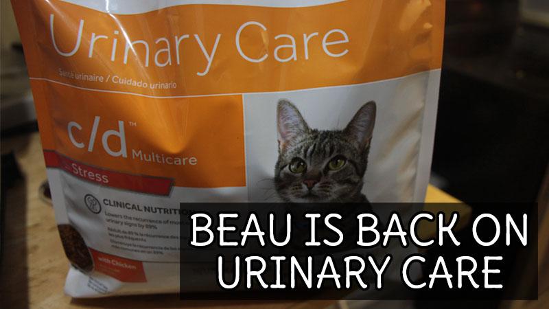 beau-is-back-on-urinary-care