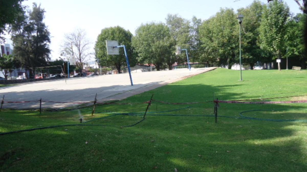 Parque p